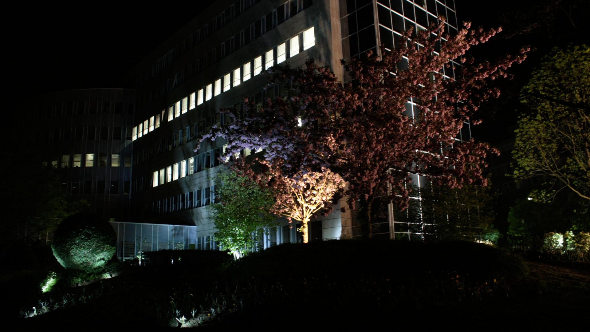 MAASS-Lichtplanung_Lichtplanung für Fassade und Freiflächen__02_Olof-Palme-Straße_Slideshow_02