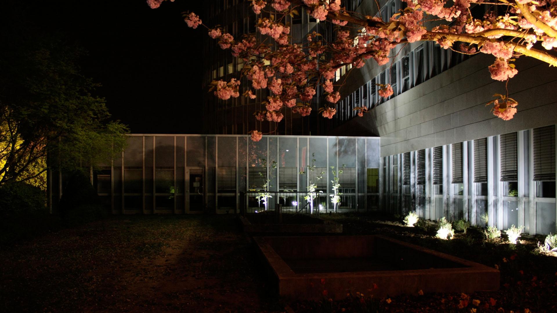 MAASS-Lichtplanung_Lichtplanung für Fassade und Freiflächen__02_Olof-Palme-Straße_Slideshow_04