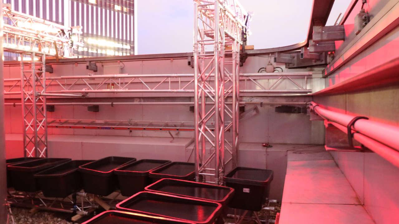 MAASS-Lichtplanung_Luminale 2020 in Frankfurt__MAASS-ING-Luminale2020-009